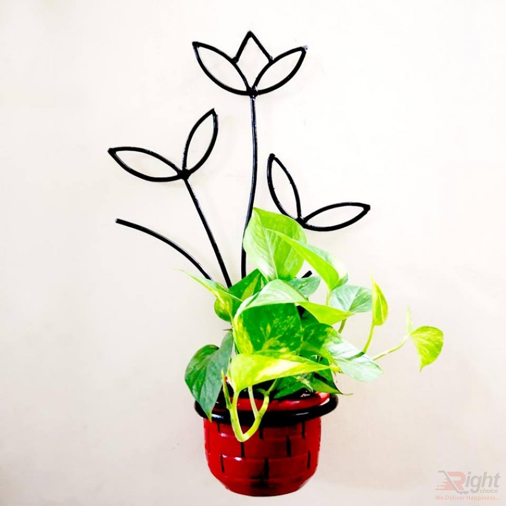 Floral Tob Stand With Money Plant