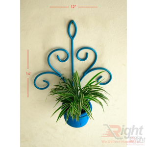Blue Iron Wall Hanger With Spider Plant