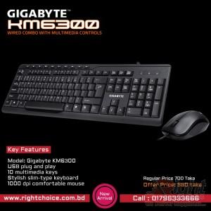 Gigabyte Multimedia Keyboard & Mouse Combo