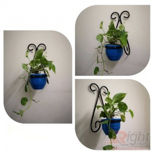 Wall Hanger With Indoor Plants (Blue Tob)