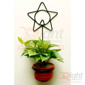 Star Shape Iron Stand