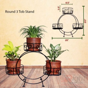 Indoor Plants with Round Shape Stand