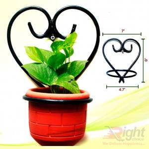 Indoor Plants with Love Stand